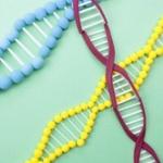 DNA1gで最大455エクサバイトのデータを保存できる可能性が!新しいハードディスクの誕生か!?