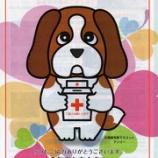 『「赤十字の活動」』の画像