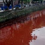 【動画】中国、やってきました、いつものアレ!川が突然、真っ赤な血の色に染まる [海外]