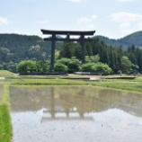 『熊野のパワーは確かに「ある」。聖地への旅、熊野編』の画像