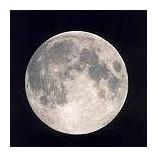 『名月』の画像