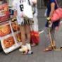 阪神ファン「甲子園のライトスタンドにカープファンが座っとる!マジでヤバいで!」