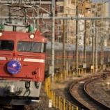 『お召し列車指定機、EF81-81』の画像