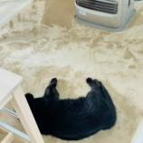 『きょうのいちまい・冬の朝のルーティーン』の画像