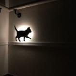 『ペット』の画像