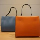 『GIANNI CHIARINIのバッグ』の画像