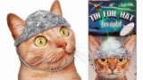 【朗報】 ネコ用アルミホイル、爆誕www(※画像あり)