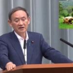 TBS「韓国の安倍総理の土下座像…」菅官房長官「日韓関係に決定的な影響を与える」
