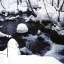 2002 奥入瀬 冬
