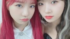 IZ*ONEチョ・ユリ&Weki Mekiユジョンの2ショット公開
