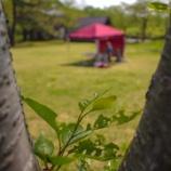 『【1dayKafe】津軽森のテントリハーサルに行ってきました!』の画像