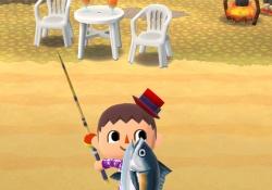 【ポケ森・画像あり】マグロの入手方法!→魚影の見分け方など!
