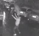 【動画】元軍人の中国人男性、11階のビルから転落した女性を受け止めようとして大怪我を負う