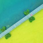 【中国】太湖で「藻」が暑さで大量死 !湖面一面黄緑色が覆い、色彩くっきり分かれる! [海外]
