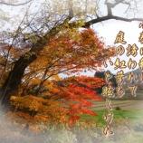 『フォト短歌「小春日和」』の画像