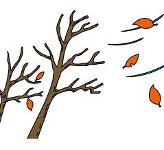 『木枯らし』『木枯らし1号が吹いた』『急に寒くなったね』を英語で言うと?