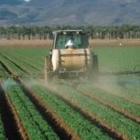 『ピレスロイド系殺虫剤の子供への影響』の画像