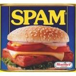 『SPAM』の画像