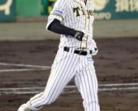 阪神・佐藤輝明さんの2021年9月のOPS