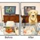 ビフォア・アフター「犬を飼う前と飼った後」では生活や人間がこう変わる9つの例