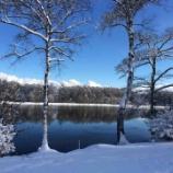 『【自然の芸術】戸隠の雪景色【冬の長野2014】』の画像