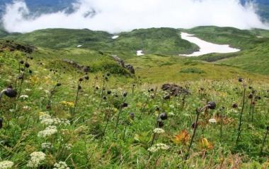 『日本百名山 鳥海山へ☆その5 ラスト 下山』の画像
