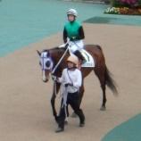 『【競馬】今日は良かった\(^o^)/東京競馬場に行ってGIIは2レースとも当たったし!今年最高の勝ち!(+640円)』の画像