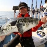 『10月18日 釣果 ジギング トラ8キロ!!』の画像