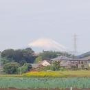 10月20日 今日の業務予定と富士山と柿