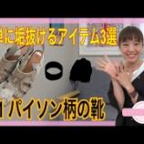 『【YouTube】簡単に垢抜けて見えるアイテム #1パイソン柄の靴』の画像