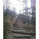 『山頂へ』の画像
