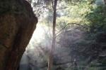 精霊が宿るが如く神秘的!私市『月の輪滝』の光景〜交野八景の1つ『尺治の翠影』と呼ばれるところ〜