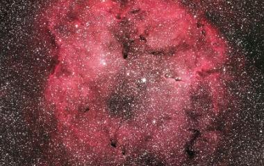 『FSQ-130ED+F3RDによるケフェウス座のIC1396散光星雲』の画像