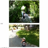 『旭川の観光スポット?』の画像