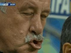 オランダ戦と試合中のスペイン・デルボスケ監督の表情が本当につらそうな件