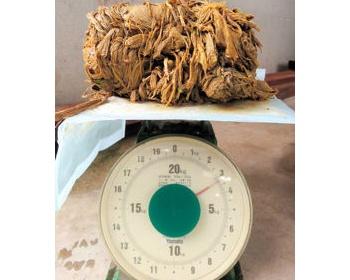 【死亡】奈良公園の鹿がゴミなど3キロ食べた結果・・・胃の中にあったものがこちら(画像あり)