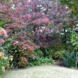 『恵泉蓼科ガーデンにて』の画像