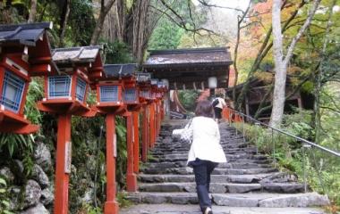 『神社詣り』の画像