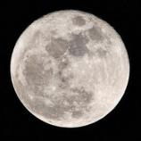 『月って色々怖すぎない?』の画像