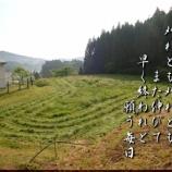 『休耕地』の画像