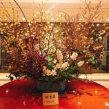 『神戸ベイシェラトンホテル&タワーズでリフレッシュしてきました』の画像