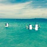 『ニューカレドニア旅行記⑤カナール島でシュノーケル&ランチ』の画像