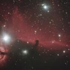 『みんな大好きオリオン座の馬頭星雲(IC434)☆彡』の画像