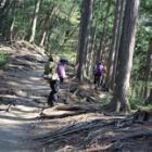 『日本百名山 雲取山に行ってきましたょ☆石尾根編』の画像