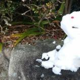 『雪。』の画像