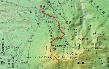 『伯耆大山(1709m)Jun.25,2019』の画像
