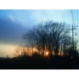 『光の中で』の画像