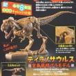 【速報】小学8年生 2020年 10・11月号 《特別付録》 BANDAI SPIRITSコラボ ティラノサウルス 全身骨格プラモデル