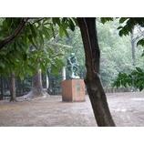 『雨の後谷公園』の画像