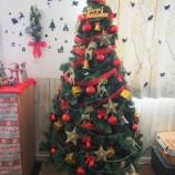 『和のラッピング決定☆ショコラのシュトーレンとクリスマスツリー』の画像